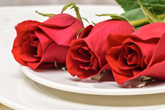 Roses on a white plate. Romantic composition for Valentine`s Day, Anniversary, Events. Place for text Stock Photography