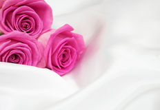Roses on white silk background Royalty Free Stock Photos