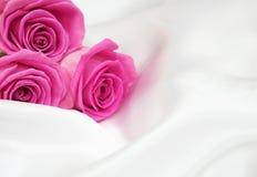 Roses on white silk background Royalty Free Stock Photos