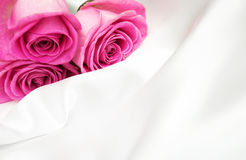 Roses on white silk background Stock Photo