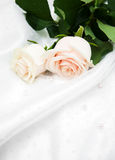 Roses on white silk background Royalty Free Stock Photo