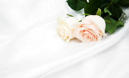 Roses on white silk background Royalty Free Stock Image