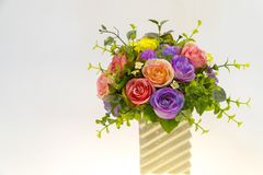 Roses in white vase with white background.  Stock Photo