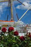 ROSES, WHITHE FRIGATE AND CUMULUS CLOUDS Royalty Free Stock Photo