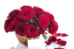 Roses in a wicker basket Stock Image