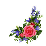 Roses and wild flowers bouquet Stock Image