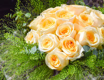 Roses. Wonderful wedding bouquet with roses and greens Royalty Free Stock Images