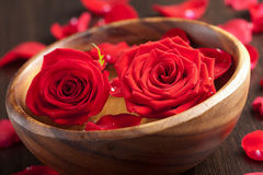 Roses in wooden bowl Royalty Free Stock Photography