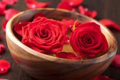 Roses in wooden bowl Stock Photos