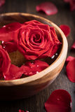 Roses in wooden bowl royalty free stock photos