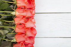 Roses on a wooden surface Stock Photos