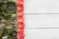 Roses on a wooden surface Royalty Free Stock Photo
