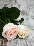 Roses on a wooden table Stock Images