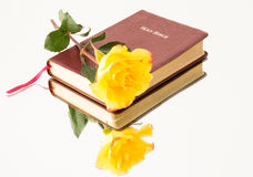 Roses and the Word of God Royalty Free Stock Photos