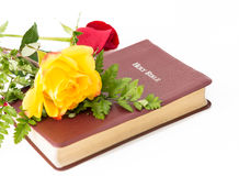 Roses and the Word of God Stock Photos