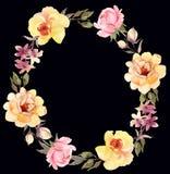 Roses wreath decorative dark composition. Watercolor illustrati Stock Image
