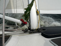 Roses and yachting Stock Photography
