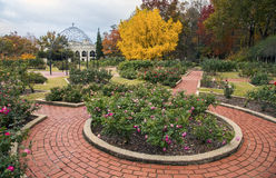 Roseto, giardini botanici di Birmingham Immagini Stock