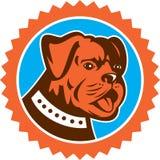 Rosett för maskot för huvud för bulldogghundbyracka Arkivfoto