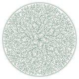 Rosetta verde con i rami di albero ed ornamento del fogliame isolato su fondo bianco royalty illustrazione gratis