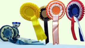 Rosette Award Ribbons Stock Images