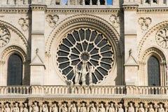 Rosette della cattedrale del Notre Dame Fotografie Stock Libere da Diritti