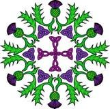 Rosette florale avec des chardons et des noeuds celtiques illustration stock