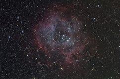 Rosette Nebula Stockbild