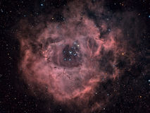 Rosette Nebula. Approximately 6 hour exposure through multiple filters of a round nebulous region in the constellation Monoceros Stock Photos