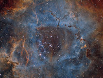 Rosette Nebula in Narrowband stock afbeeldingen