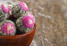 Rosettes fleurissantes de thé Photo stock