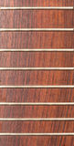 Rosewood guitar neck. A guitar neck with no strings royalty free stock photo