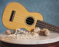 Rosewood Ukulele with Sea Shell Decor. A rosewood Soprano Ukulele lies on an antique marble table displayed with various small sea shells. A textured blue stock photography
