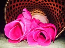 Rosey Стоковое Изображение
