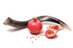 Rosh HaShanah concept. Pomegranates and Shofar for Rosh Hashana, isolated Royalty Free Stock Image