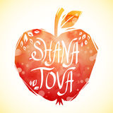 Rosh Hashanah greeting card with apple. Shana Tova or Jewish New year symbols. Vector illustration Royalty Free Stock Images