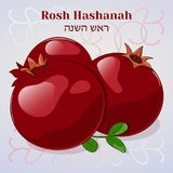 Rosh Hashanah. Jewish New Year greeting card with pomegranate in cartoon style. Hebrew translation: Rosh Hashanah Stock Image