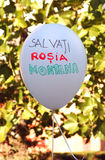 Rosia Montana Protest i Oradea Royaltyfri Fotografi