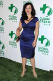 Rosie Perez. At Global Green USA's 6th Annual Pre-Oscar Party. Avalon Hollywood, Hollywood, CA. 02-19-09 Stock Photography