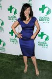 Rosie Perez. At Global Green USA's 6th Annual Pre-Oscar Party. Avalon Hollywood, Hollywood, CA. 02-19-09 Royalty Free Stock Photo