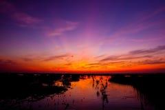 Rosige Wolken kurz vor Sonnenuntergang Stockbilder