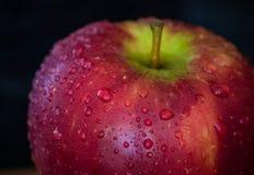 Rosiger roter Apfel Stockbild