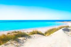Rosignano Solvay Vada Castiglioncello, άσπρα παραλία άμμου και coas Στοκ Εικόνες