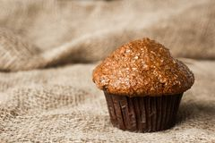 Rosinen-Kleie-Muffin stockbilder