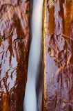 Érosion hydrique, fourchette gauche du fleuve du nord de crique Photos libres de droits