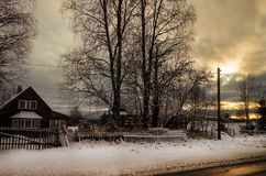 Rosja Karelian lasy w zimie Drzewa w śniegu Obraz Royalty Free