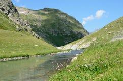 Rosja Kaukaska biosfery rezerwa, źródło rzeczny Imeretinka Zdjęcia Stock
