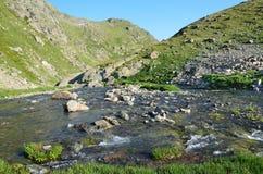 Rosja Kaukaska biosfery rezerwa, źródło rzeczny Imeretinka Zdjęcia Royalty Free