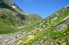 Rosja, lata Kaukaska biosfery rezerwa w chmurnej pogodzie krajobrazy Obrazy Royalty Free