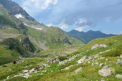 Rosja, lata Kaukaska biosfery rezerwa w chmurnej pogodzie krajobrazy Obraz Stock